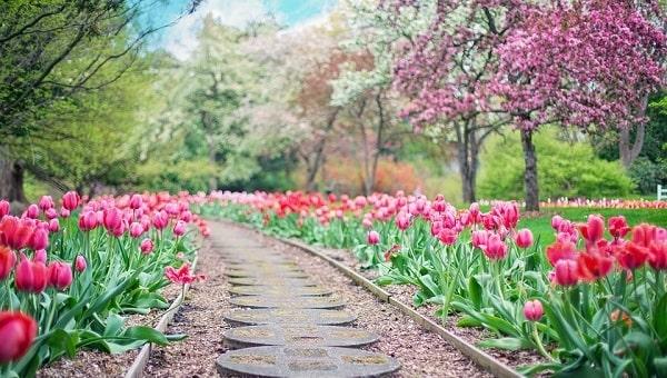 Primavera. Definición