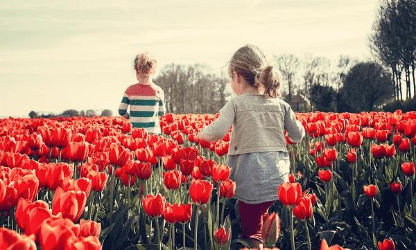 Primavera. Festejos tradicionales y cultura