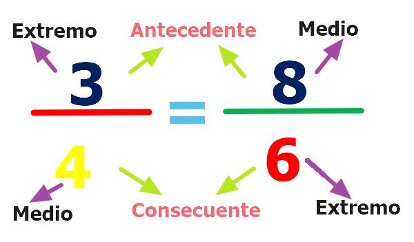 Proporcionalidad. Características