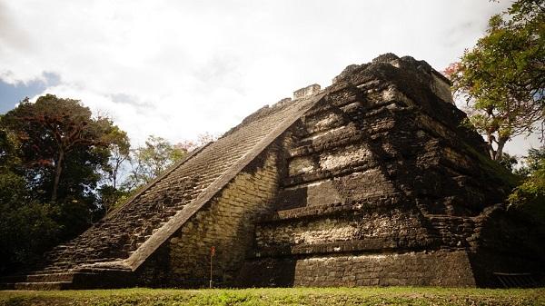 Cultura maya. Organización social y política