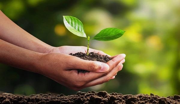 Definicion de Desarrollo-Sustentable