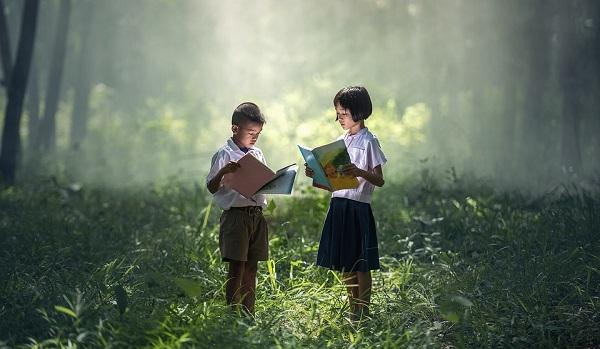 Literatura. Importancia