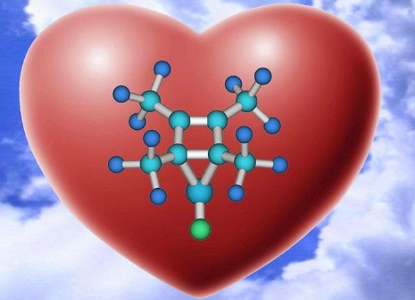 Perspectiva biológica sobre el amor