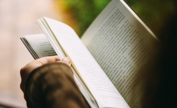 Recursos literarios. Recursos literarios fónicos
